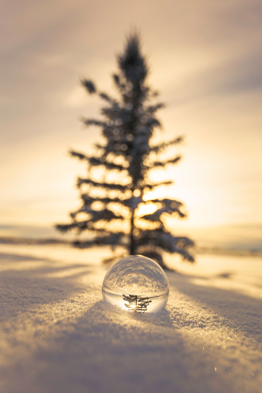 Crystal ball by PaulLavoieImages - The Cold Winter Photo Contest