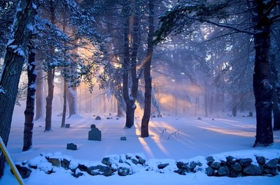 Winter In A New England Cemetery
