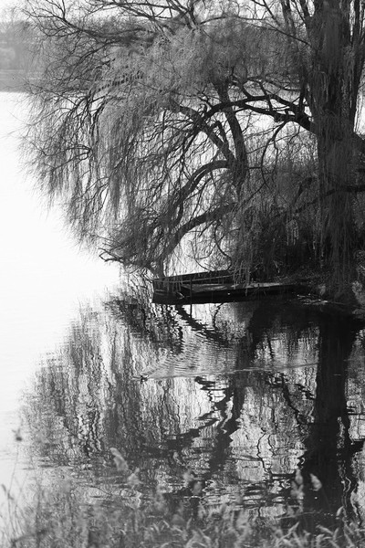 """""""Heiliger See"""" (Holy Sea) in Potsdam, Germany BW"""