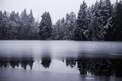 North Lake Christmas 2 (1 of 1)