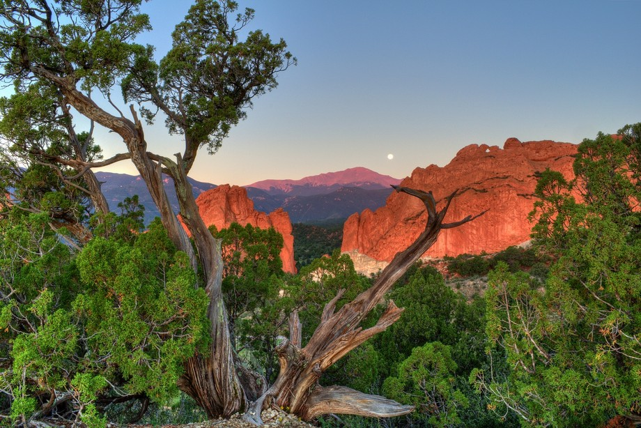 Predawn in August 2010 of the moon setting behind Pikes Peak. Taken from the Garden of the Gods i...
