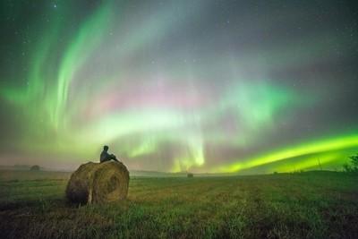 In a Farmers Field
