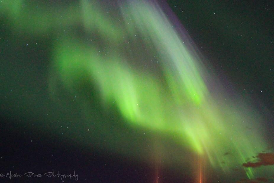 Caught a few light pillars when shooting the breathtaking aurora.
