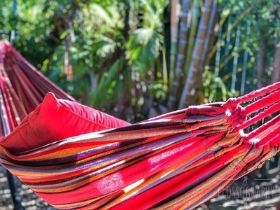 Summer lovin' #colourpop #hammock #redhammock #palmtrees #sunshine #Hey_ihadtosnapthat #globalphotofest #australiagram #focusaustralia #ig_discover_australia #australia_shotz #ig_down_under #ig_creativephotography #instalike #ig_aussiepix #1more_australia