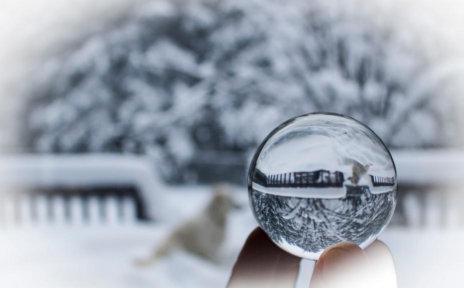 Winter Snowglobe