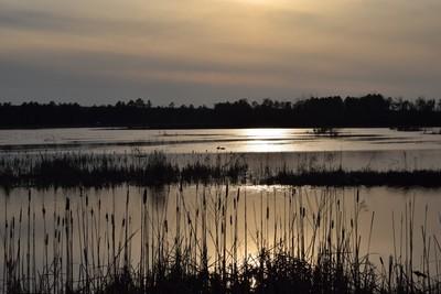 estuary at Houghton Lake