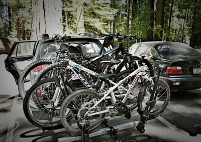 Road trip thru Redwood National Park, CA