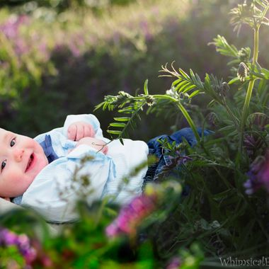 Sawyer is a happy, cute baby boy I photographed in a field of wild flowers called Vetch, shortly before the sun set.