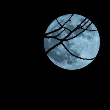"Supermoon of January 2018.  Copyright Notice: ALL IMAGES on this web site are protected by the U.S. and international copyright laws, all rights reserved. The image may not copied, reproduced, manipulated, or used in any way, without written permission of Jelieta Walinski Ph.D, & Walinski's Inner Vission Photography a licensed owner. Any unauthorized usage will be prosecuted to the full extent of US Copyright Law.  Ang larawan na ito ay copyrighted kaya huwag mag-atubiling kopyahin, o ""mag-screenshot"", huwag imanipula, at aangkinin.Alalahanin na araw-araw ko minomonitor ang mga larawan mo..   'STEALING IS A CRIME!"""