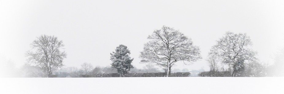 A snow landscape.