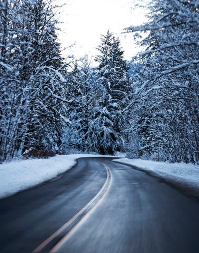 Squamish Valley Road