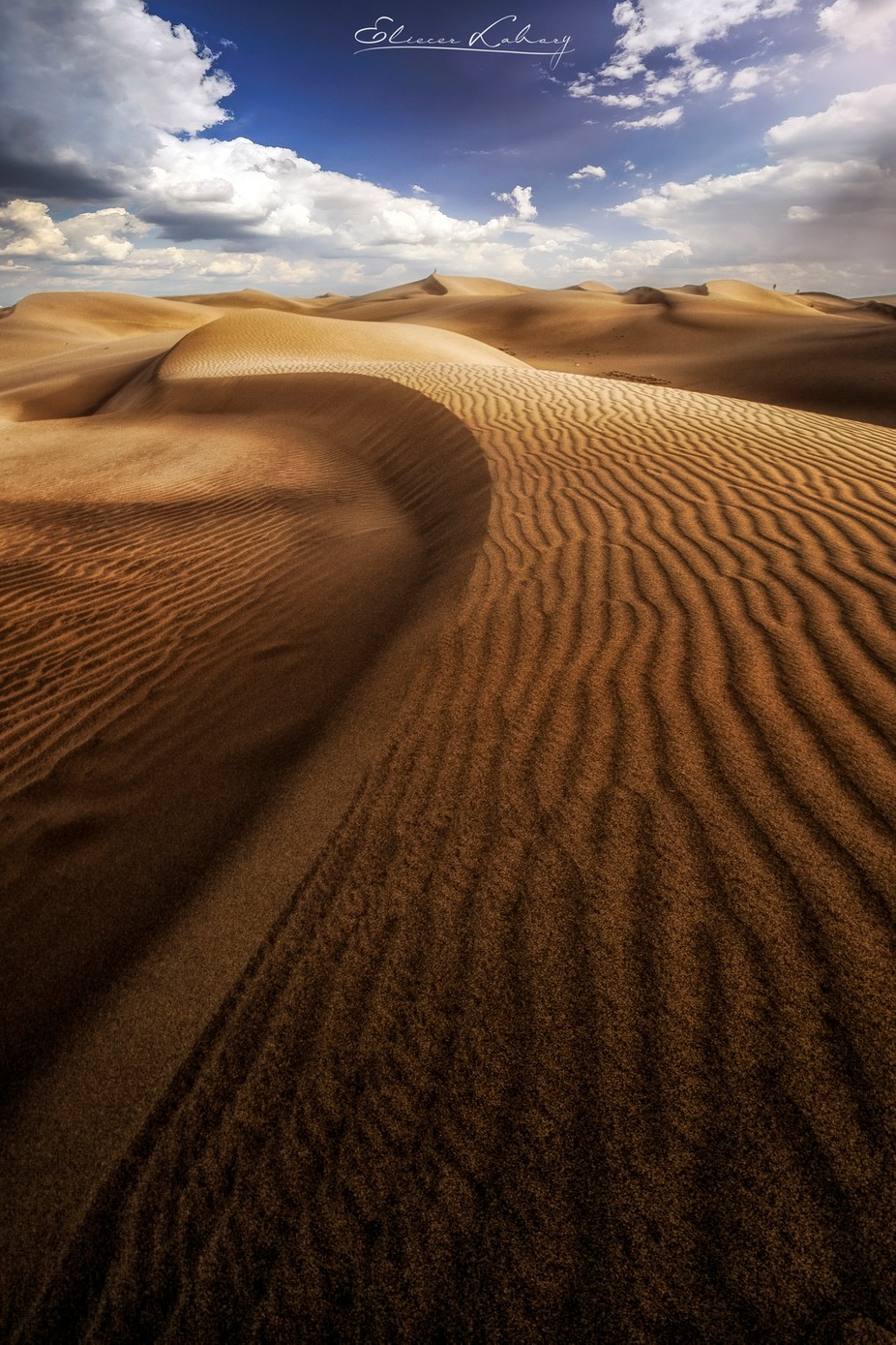 Maspalomas beach. Gran Canaria island. by EliecerLabory - Landscapes And Sand Photo Contest