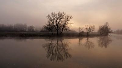 Misty morning by the river Korana