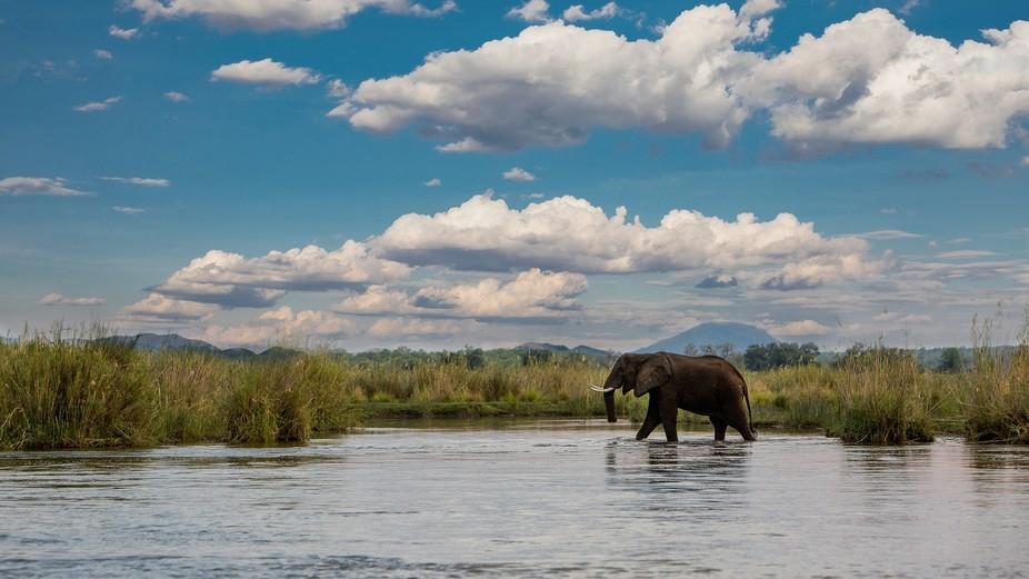 Zambezi, Zambia