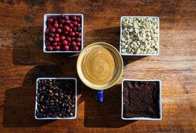 Coffee.coffeebeans.TysonHarrison.Photography-2