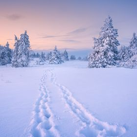 A magical sunset in a Winter landscape, during a hike in the snow.