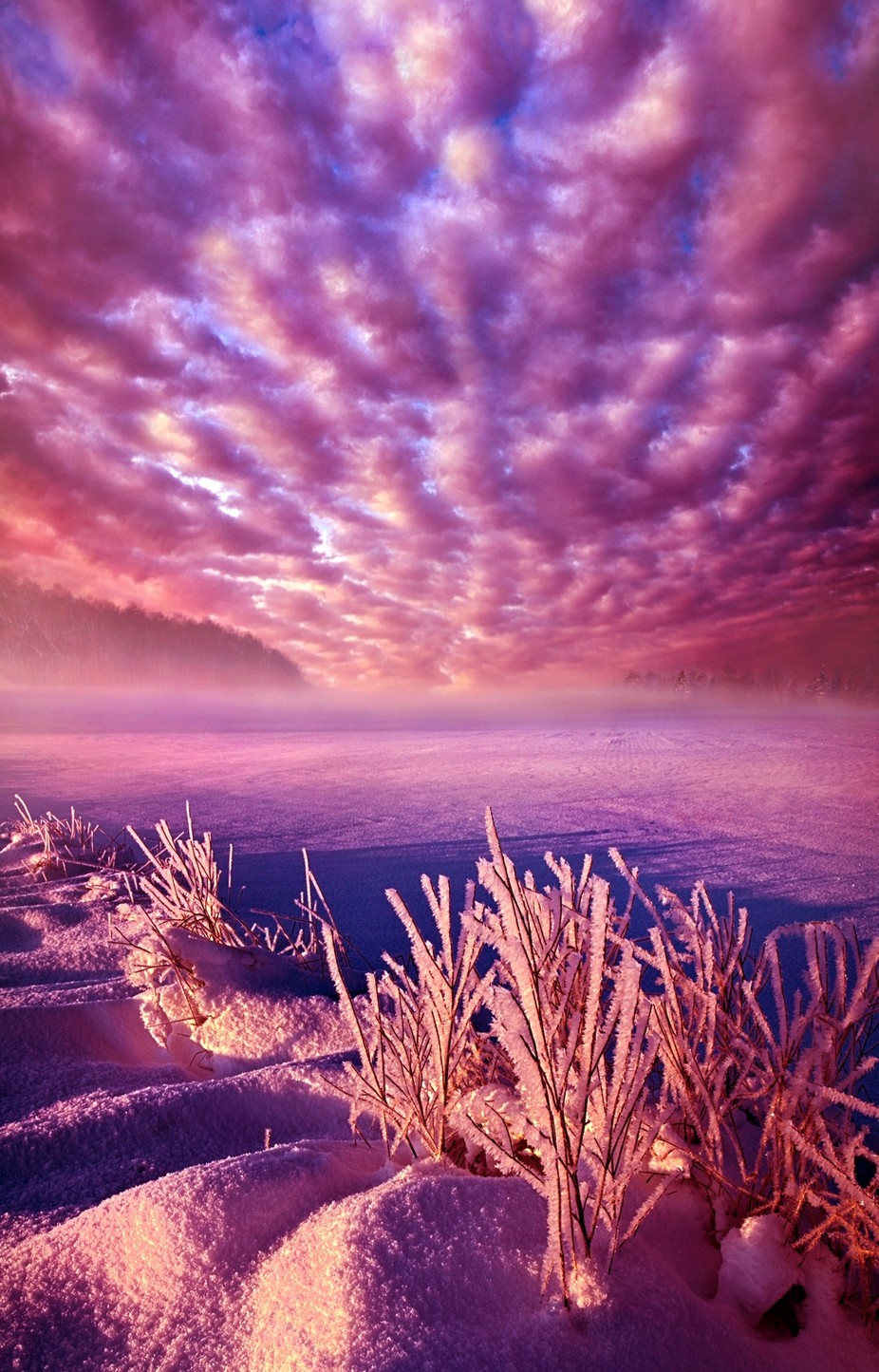 Lost Within by phil1 - Pastel Colors Photo Contest