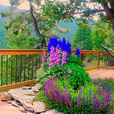Rocky mountain gardening!