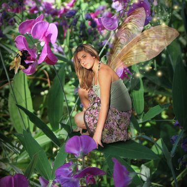 A fairy ponders in Sweet Peas as Bumble Bee buzzes.