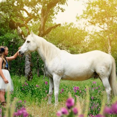 A little girl pets a white horse on the nose amongst Sweet Peas.