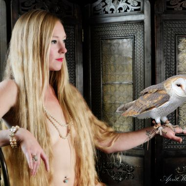 Annie has an affinity for Barn Owls and actually has some living in her barn.  This picture reminds me a bit of Daenerys with a dragon.