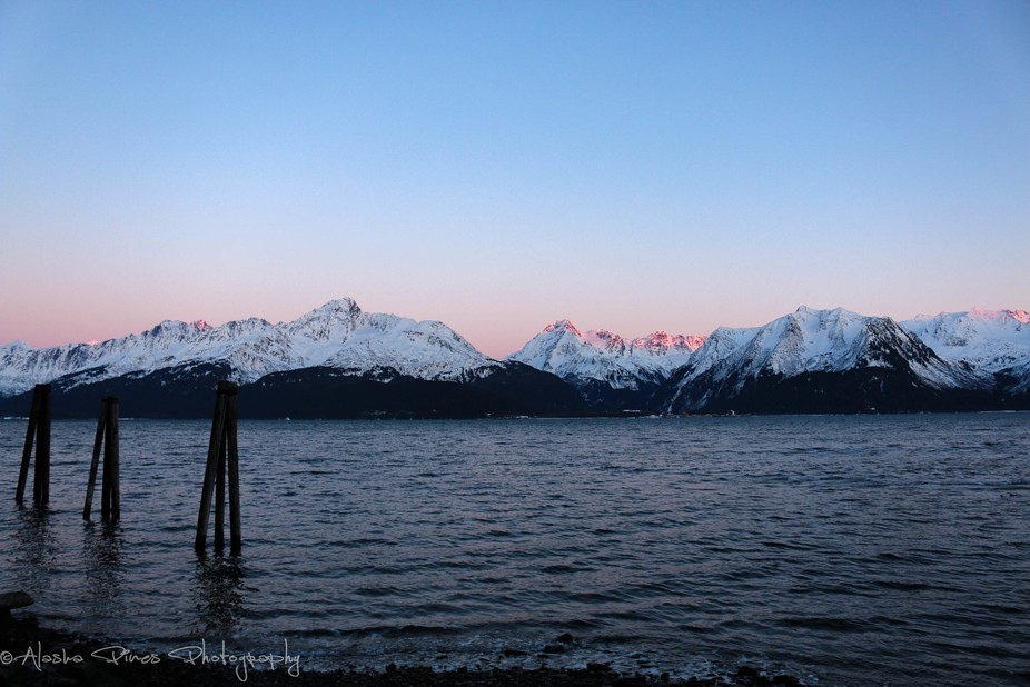 Sunset in Seward Alaska, with a lovely alpenglow on the mountains, with the blue skies of the setting sun.