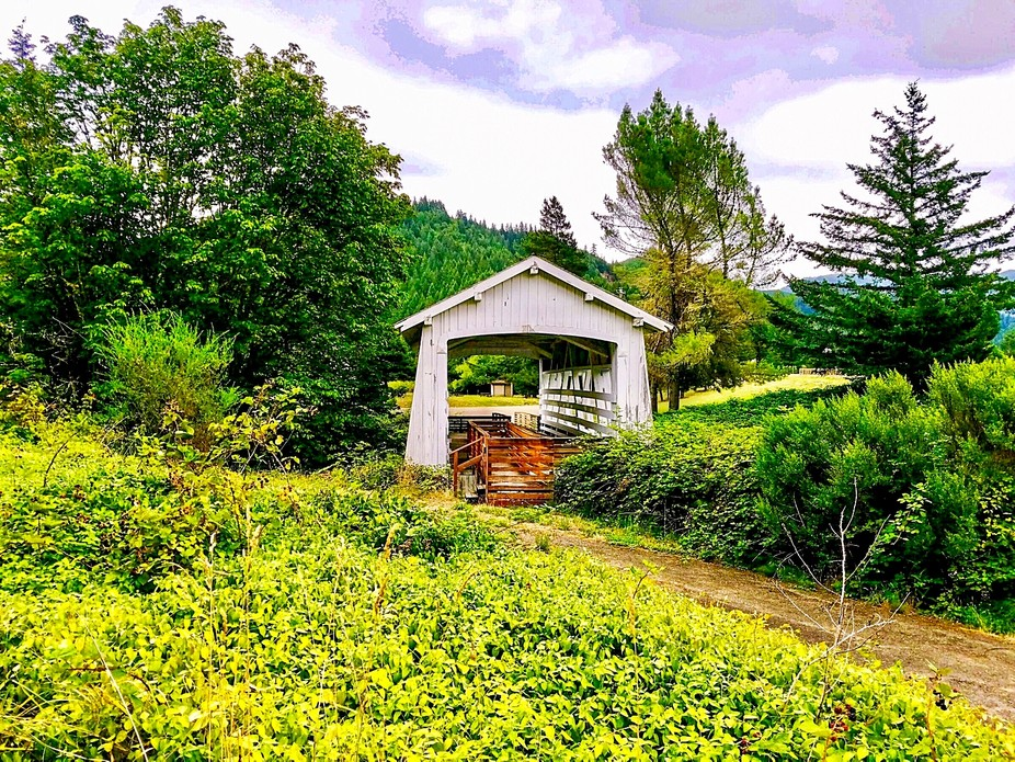 Located in Remote, Or, this is a 1920 covered bridge.