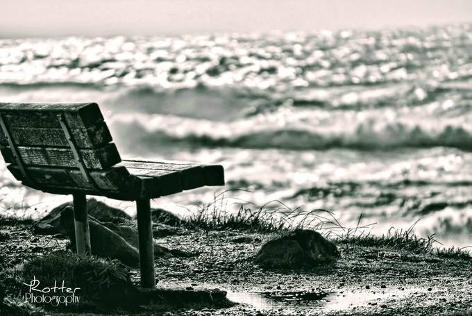 Are you lonesome tonight-002 by jrotter - My Favorite Chair Photo Contest