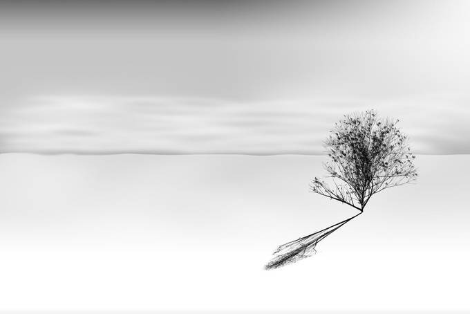 Isolated by littlebearph - Stillness Photo Contest