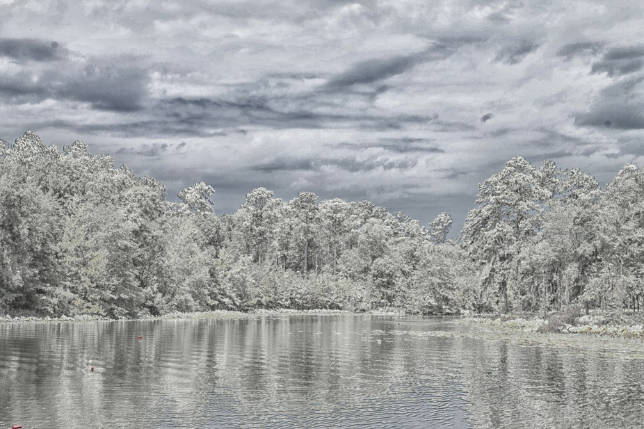 Photo taken at Lake Eufaula State Park, located near the town of Eufaula, Alabama.  Photo retouch...