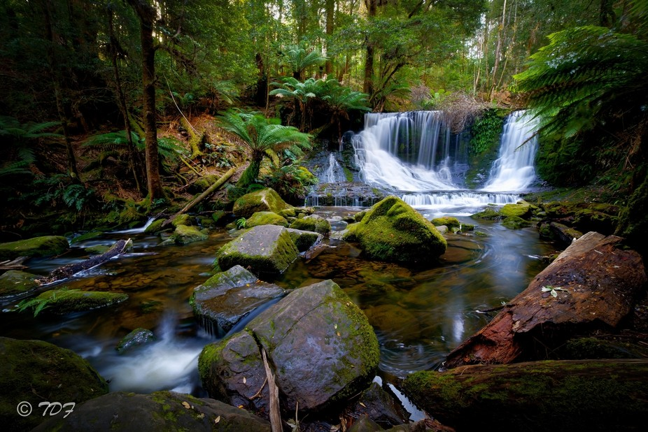Tasmania is full of beautiful waterfalls, this one is one of my favourites.