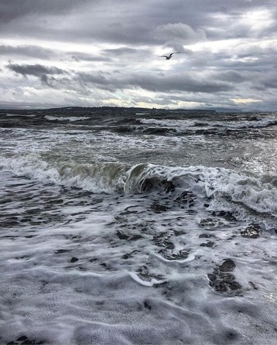 """""""Rise above the storm and you will find the sunshine""""♥ #quotestoliveby #quote #blessed #behappy #beautifulbc #amazing #instalove #instadaily #whiterock #explorebc #ocean #oceanview #waves #storm #stormy #goodmorning #goodvibes #goodvibesonly #go"""