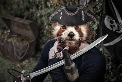 Captain Red Bear-Cat