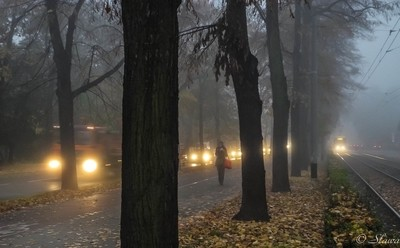 city & fog