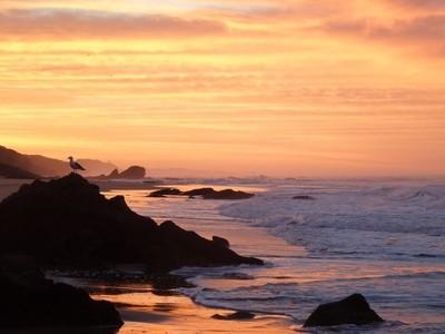 Sunrise at Platbank, Sedgefield 1