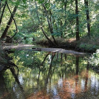 Ozarks Trail River reflection