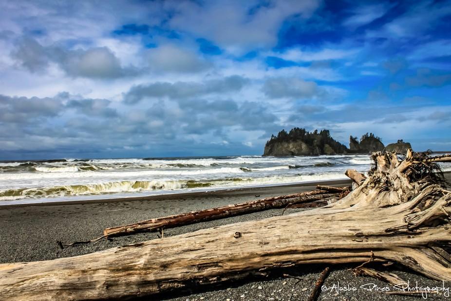 Watching the waves at LaPush Beach, outside of Forks, Washington.