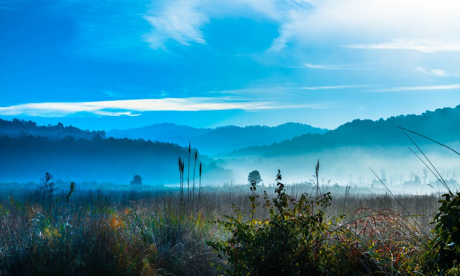 Morning mist in winter where river Ramganga flowing, life line of Jim Corbett National Park view ...