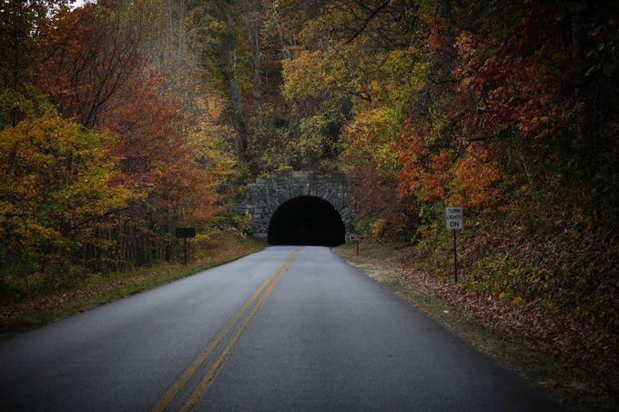 Tunnel by sydneymanuel - Shooting Tunnels Photo Contest