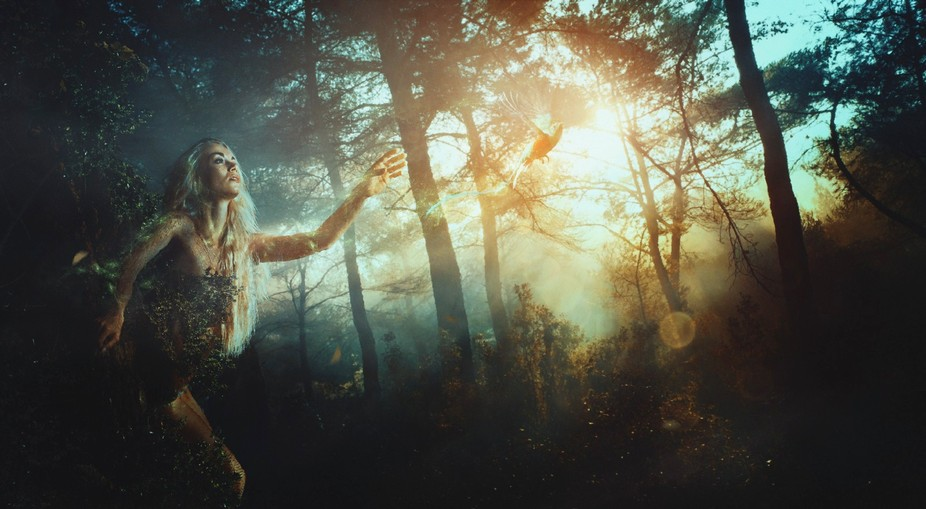 Beautiful Kate in fairy forest..enjoy