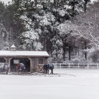 Fair Winds Farm was beautiful blanketed in snow
