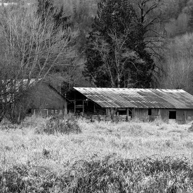 Red Shed in Black and White