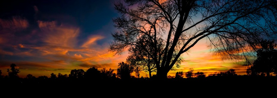 Sunset in the park1