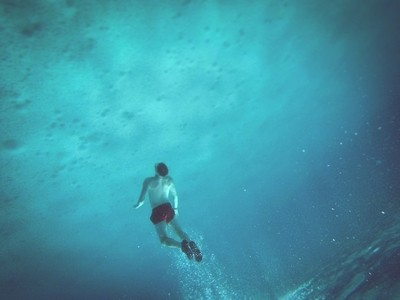 Sea Life!