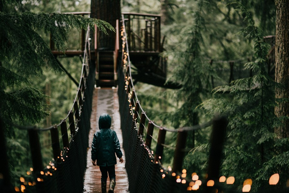 An adventure through the treetops in beautiful Vancouver, BC.