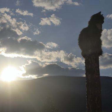 Climbing the Sunset