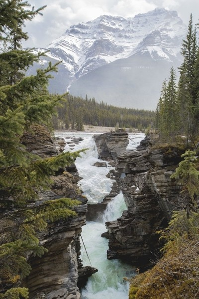 Misty Mountains at Athabasca Falls