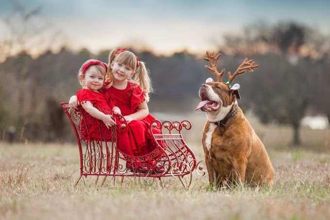 Christmas Portrait with Cowboy by Julieweiss - Family In The Holidays Photo Contest