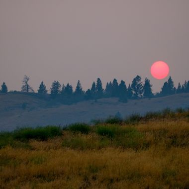 The red smokey sun ready to sink behind the trees on Hamilton Hill near Merritt