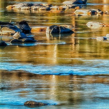 A photograph of the Congaree River in the morning light.